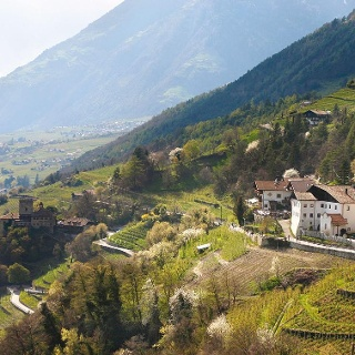 Burgweg - Ochsentodweg - Castle Tyrol