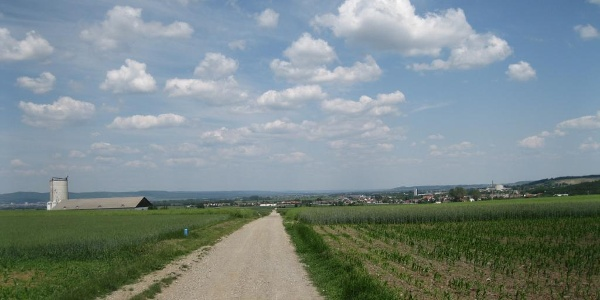 Richtung Draßburg. Im Rückblick Zagersdorf.