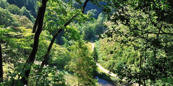 Valleien en bergkammen Xhoffraix