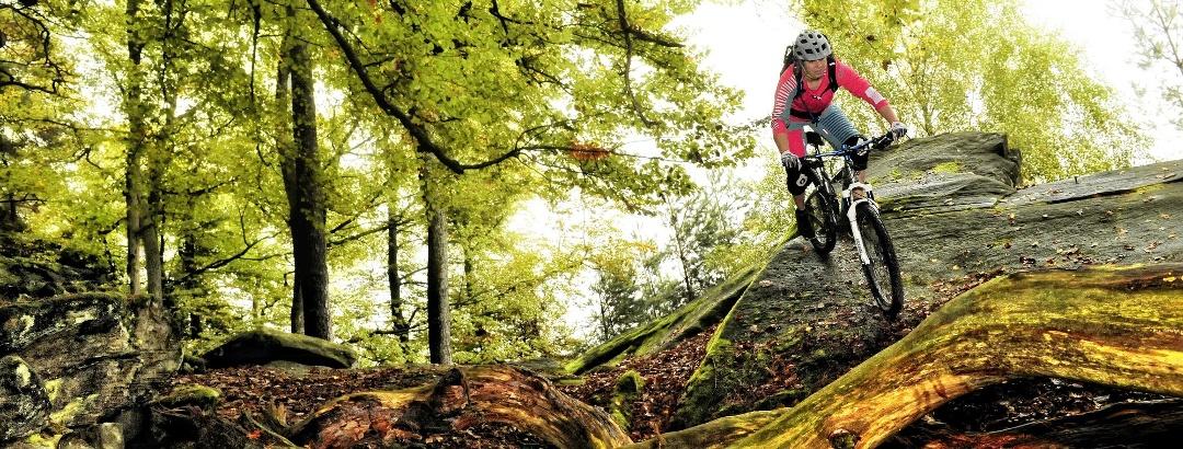Mountainbiketouren in der Pfalz