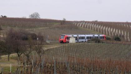 Der Weinstraßen-Express