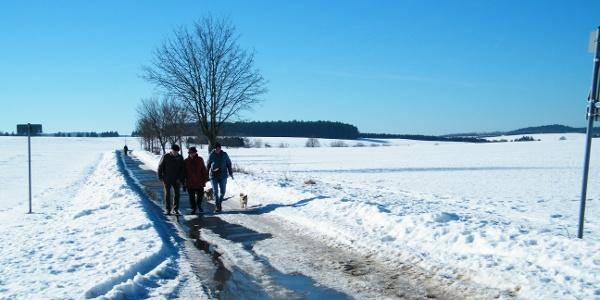 Wandern auf dem Harzweg