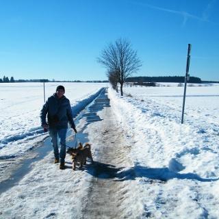 Winterwanderung auf dem Harzweg