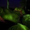 Das imposante Hünengrab bei Hekese gehört zu den größten im Osnabrücker Land