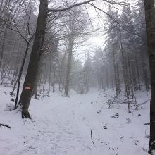 Aufstieg vom Rodatal mit Schneeschuhen