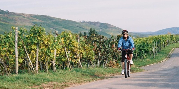 Rhein-Mosel-Schinderhannes - Radeln durch Weinlagen