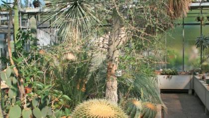Botanischer Garten Darmstadt