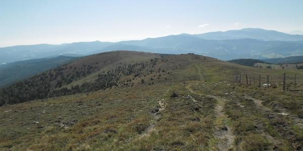Almgebiet - Richtung Görlitzerhütte