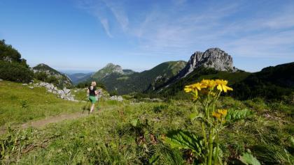 Wanderweg in Richtung Aggenstein und Brentenjoch