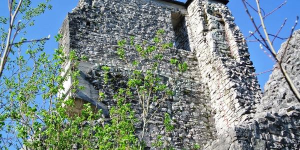 Ruine Gutrath