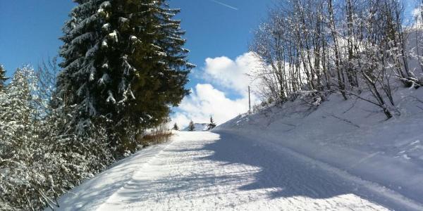 Winterwanderweg Hochhäderich