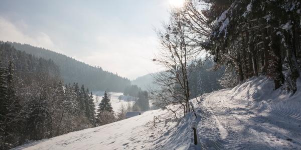 Das Reichenbachtal im Winter