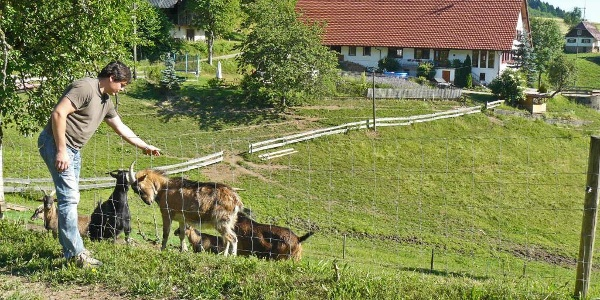 Hapbach - Dohlenbacherhof
