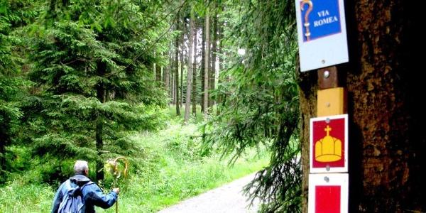 Pilger auf der VIA ROMEA im Harz
