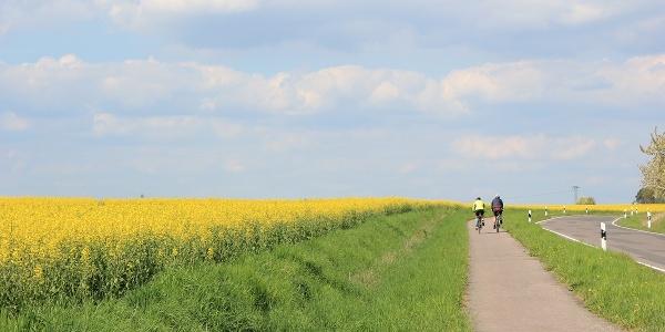 Radfahrer zwischen Körlitz und Kühnitzsch