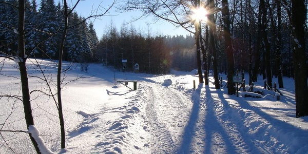 Am Saydaer Winterwanderweg