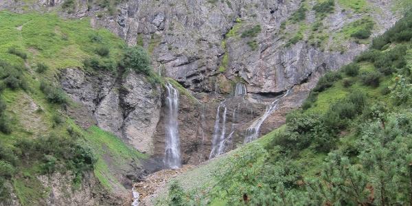 Alpschellaalpe (19. August 2013)