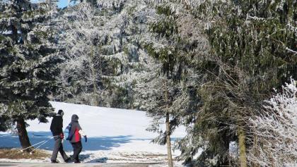 Winterwanderung in Rechenberg-Bienenmühle
