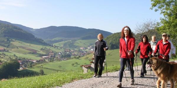 Nordic-Walking im Gastlichen Kinzigtal