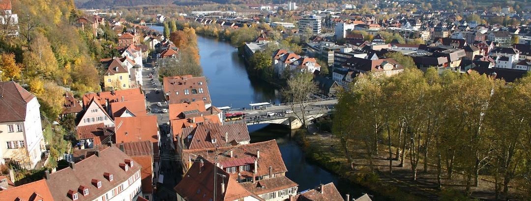 Blick von der Stiftskirche den Neckar entlang
