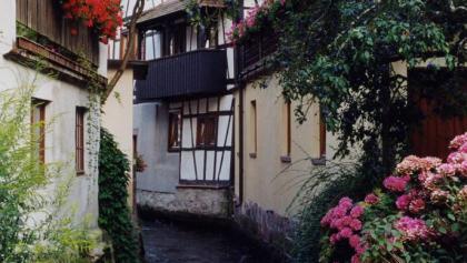 Bachanlage von Oberkirch