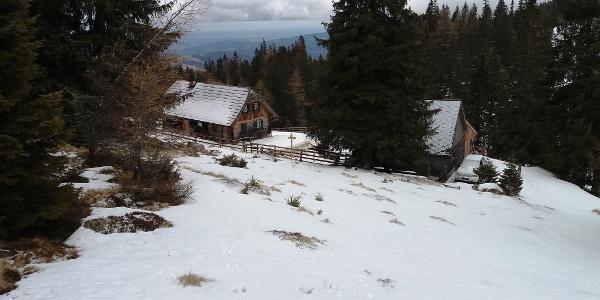 Auf dem Weg zur Saureishütte (vom Seiner-Kreuz kommend)