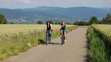 Radtour bei Bühl