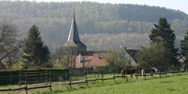 Wiesen bei Cleversulzbach