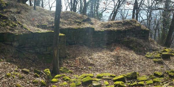 Ruine Hohenfels10. März 2017 12:49:51