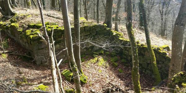 Ruine Hohenfels 10. März 2017 12:51:42