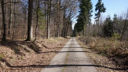 Zwischen Remchingen und Mutschelbach