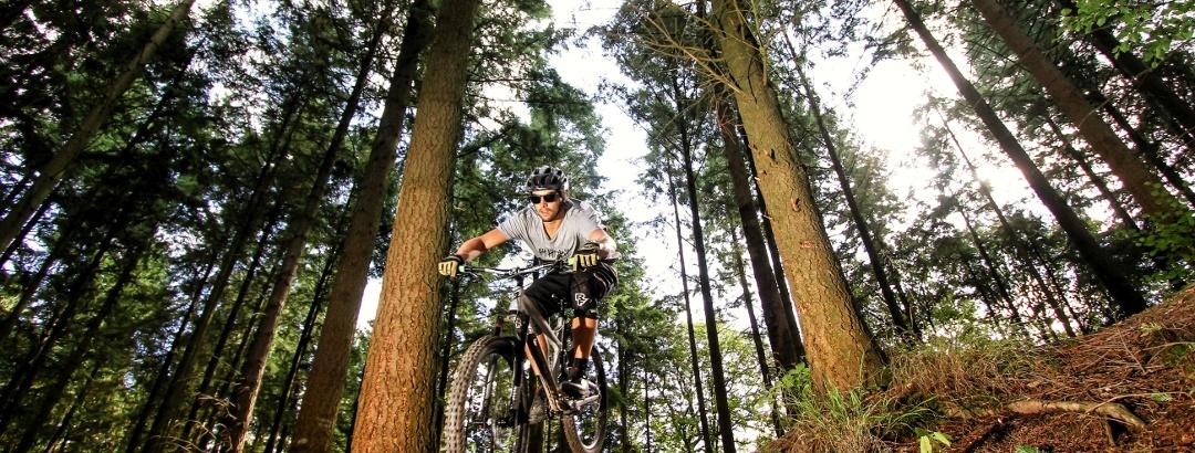 MTB-Trailpark Mehring
