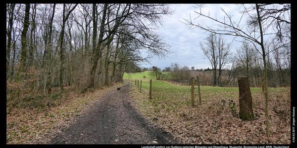 Landschaft südlich von Sudberg zwischen Müngsten und Stiepelhaus