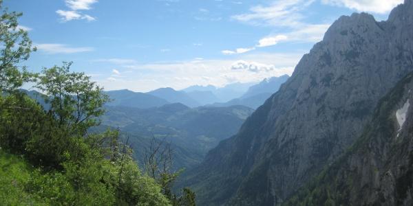 Im Kaiserbachtal (4. Juni 2011)