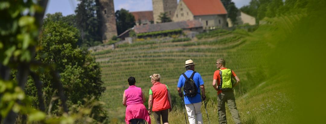 Wandern in Kraichgau-Stromberg