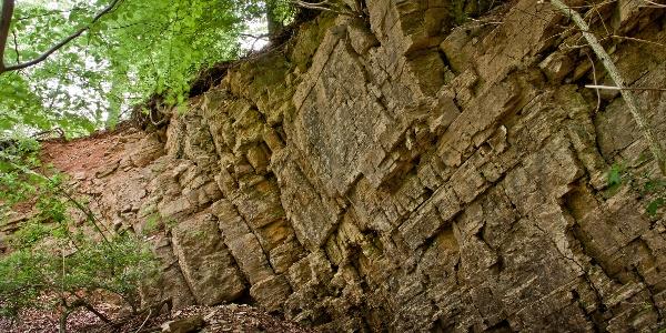 Der Steinbruch ist ein Fenster in die Erdgeschichte.