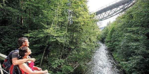 Blick auf die Wutachbrücke