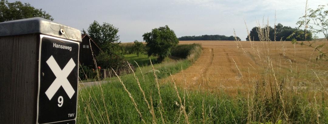 Aerzen - Hansaweg