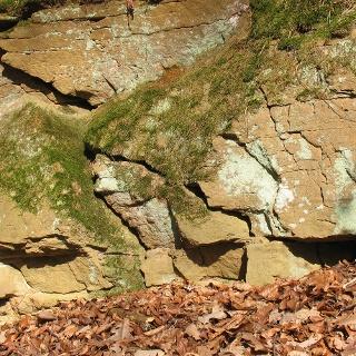 Sandsteinbänke am Hohlweg bei Magstadt