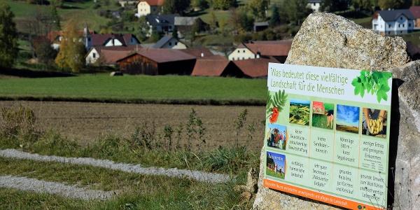Hochbergweg, Landschaft bewusst erleben