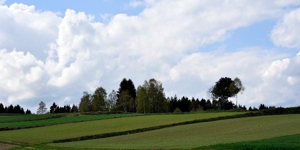 Kotting Nondorf - Wanderweg