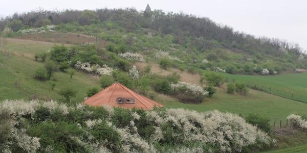 A Somlyó-hegy és a Szent László-kilátó