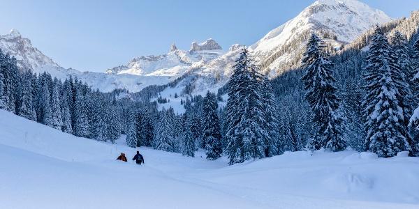 Winterwandern Gauertal