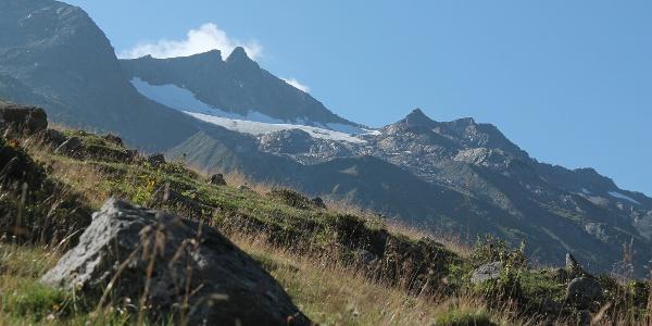 Bei der Alp Cuolm Nalps mit Piz Gannaretsch