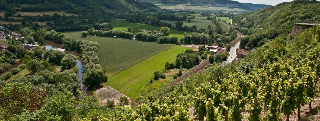 Blick ins Saaletal von Dornburg