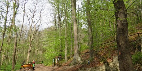 Die Fürstenbrunnen Quelle