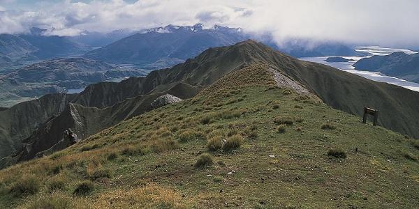 Mount Alpha