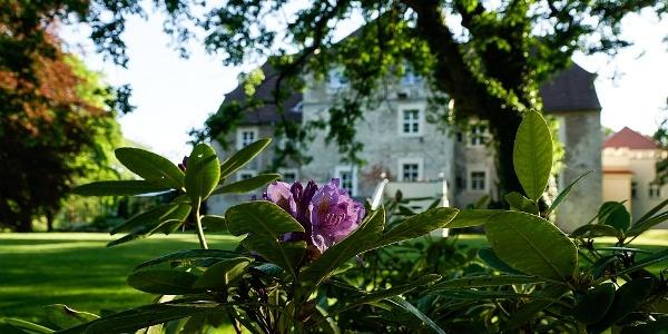 Wasserschloss_Mellenthin-20130523-171924-i020-p0024_980x553