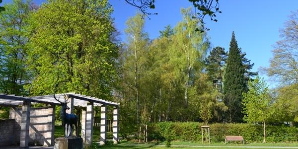 Schlosspark am Schwanberg
