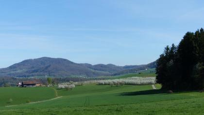Höhe Zunzgerberg, Blick Richtung Hauenstein